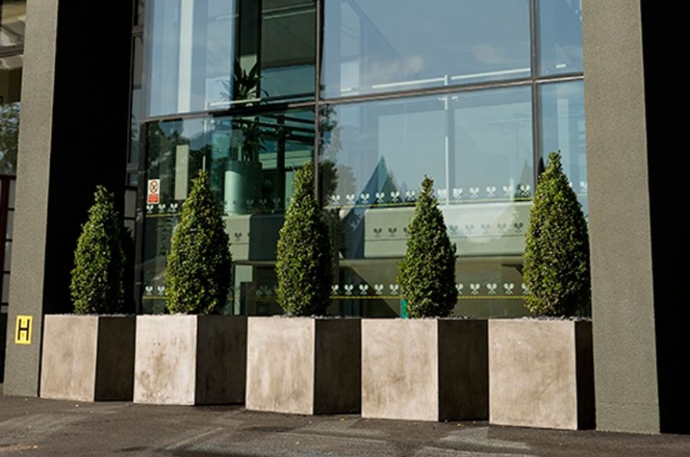 Close Up Of Fresco Planters Outside Entrance