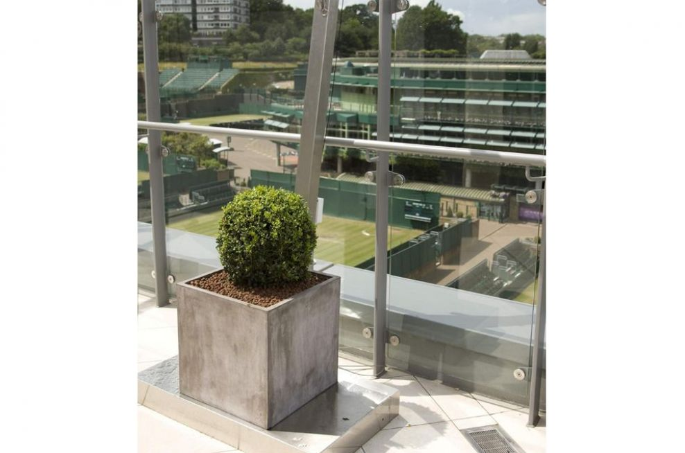 IOTA Contemporary Fresco Planters Overlooking Centre Court