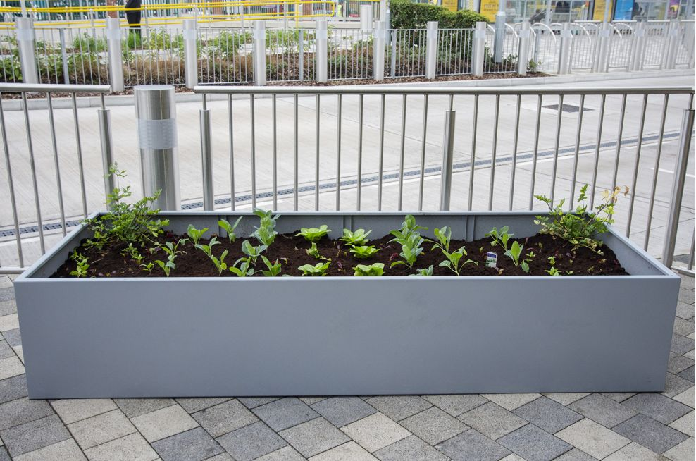 Close Up Of Steel Trough Planters From IOTA