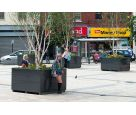 Bespoke granite tree planters for Derry City Council