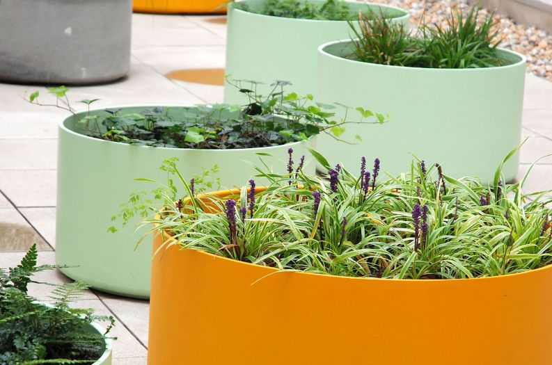 King's College London – custom-coloured DELTA 45 Round planters