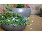 City University – LAUSANNE planter