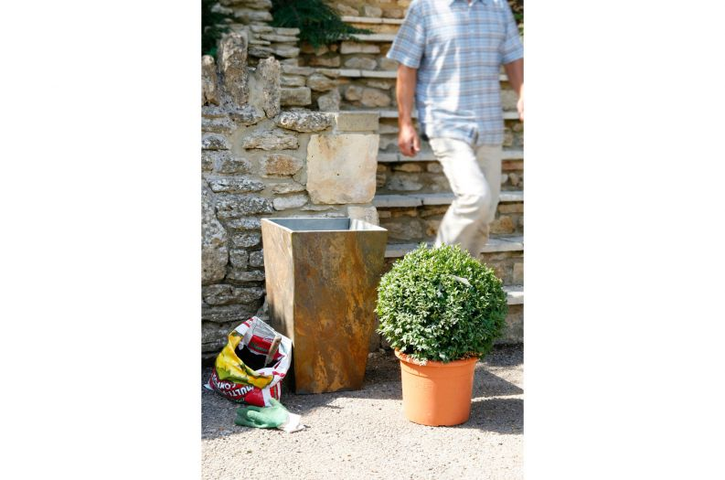 Slate Tall Taper large planter, supplied with compost and Buxus ball topiary